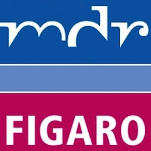 mdr-figaro-radiobeitrag-hattie-studie-lernen-sichtbar-machen-visible-learning